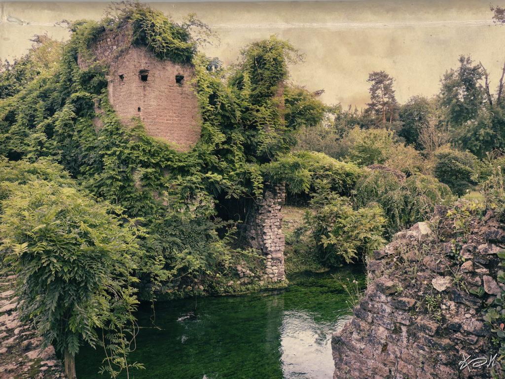 fotografia paesaggio giardino ninfa
